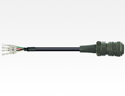 ASD-CAPW1205
